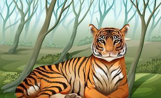 Um tigre assustador na floresta vetor