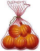 Cebolas embaladas em saco de rede vetor