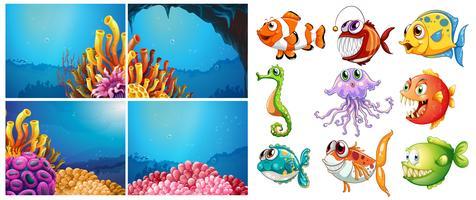 Animais marinhos e quatro cenas debaixo d'água vetor