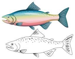 Contorno animal para peixes vetor