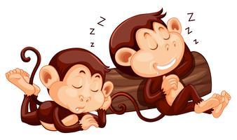 Dois macacos dormindo no log vetor