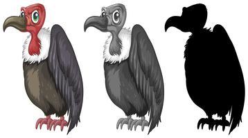 Conjunto de design de personagens de abutre