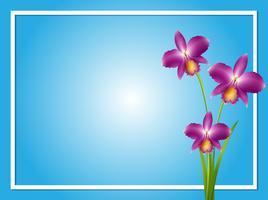 Modelo de fronteira com orquídea roxa vetor
