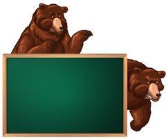 Modelo de placa com dois ursos vetor