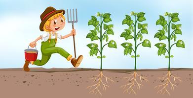 Agricultor plantando no campo vetor