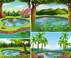 Quatro cenas com lagoa na floresta vetor