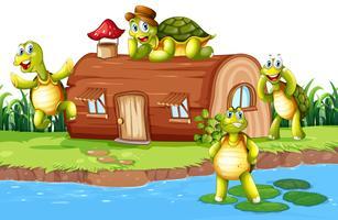 Tartaruga na casa da lagoa vetor