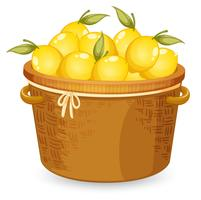 Uma cesta de limão vetor