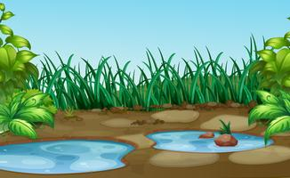 Pequeno furo de água em natue vetor