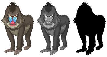 Conjunto de caracteres de babuíno de mandril vetor