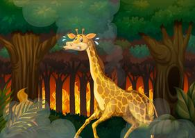 Girafa, executando, longe, wildfire, floresta vetor