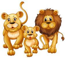 Leão na família com filhote fofo vetor