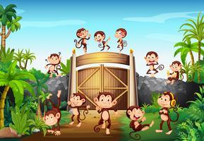Macacos se divertindo no portão vetor