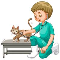 Veterinário, examinando, pequeno, gato vetor