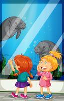 Meninas olhando peixe-boi nadando no tanque vetor