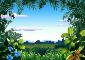Um modelo de tema de selva vetor