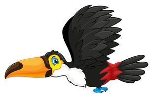 Tucano voando no céu vetor