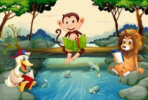 Animais selvagens lendo livros pelo rio vetor