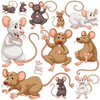 Plano de fundo sem emenda com muitos ratos vetor