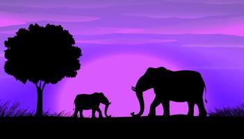 Elefantes da silhueta vetor