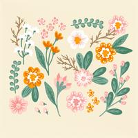 Vector mão colorido desenhado flores