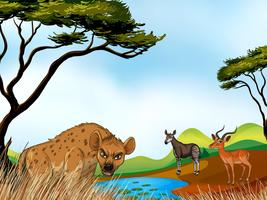 Animais e campo vetor