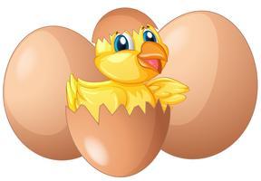 Ovo de incubação vetor