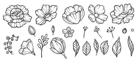peônias mão elemento desenhado. desenho de jardim floral de flores em botão e folhas coleção de vetores de peônias. ilustração de flor de peônia, desenho de flor botânica