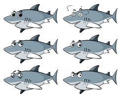 Grande tubarão branco com seis emoções diferentes vetor