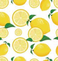 Fundo sem costura com limão vetor