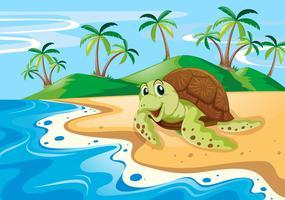 Tartaruga Marinha na praia vetor