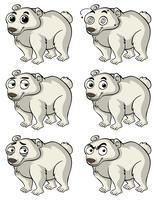 Urso polar com diferentes expressões faciais vetor