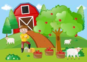 Agricultor, ficar, por, a, macieira, em, a, fazenda vetor