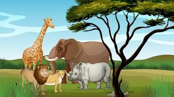 Animais assustadores na selva vetor