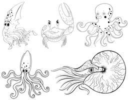 Contorno animal para animais marinhos vetor
