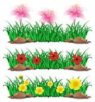 Flores em arbusto verde vetor