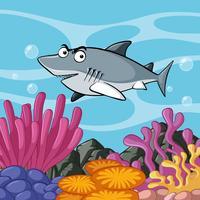 Tubarão cinzento nada no oceano vetor