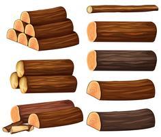Diferentes tipos de madeiras vetor