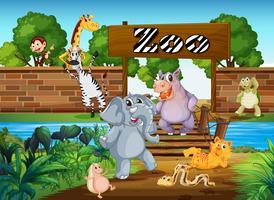 Animais no zoológico vetor