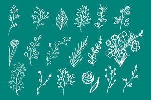Mão desenhada elementos florais vintage flores folhas ramos plantas decorativas para convites de fundo de design cartões logos flayers scrapbooking etc, ilustração vetorial