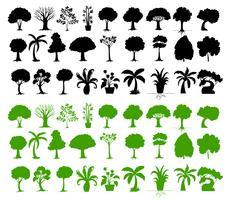 Variedade de árvores vetor