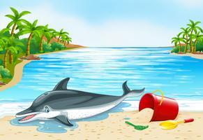 Golfinho deitado na praia vetor