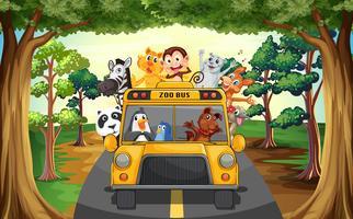Animais e ônibus vetor