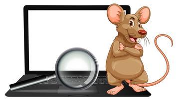 Um rato no laptop e lupa vetor