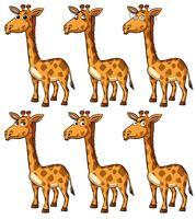 Girafa com emoções diferentes vetor