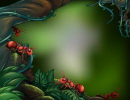 Formigas na floresta tropical vetor