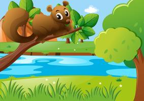Esquilo marrom no galho vetor