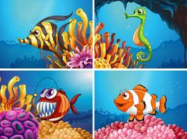 Animais marinhos sob o mar