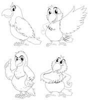 Contorno animal para pássaros papagaio vetor