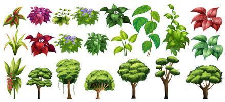 Árvores e flores vetor